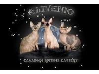 Логотип Питомник ALIVENIO