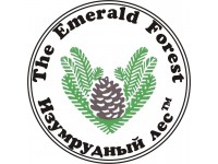 """Логотип """"Изумрудный лес"""" - Ленточные пилорамы для успешного бизнеса."""