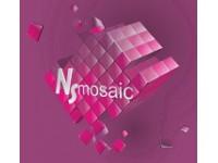 Логотип NS-mosaic, ООО