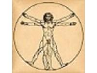 Логотип Центр компьютерной диагностики организма