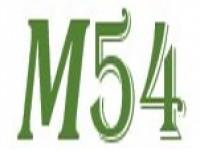 Логотип Мастер54