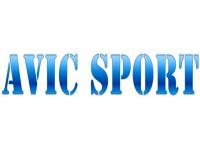 Логотип AVIC SPORT, торговая компания
